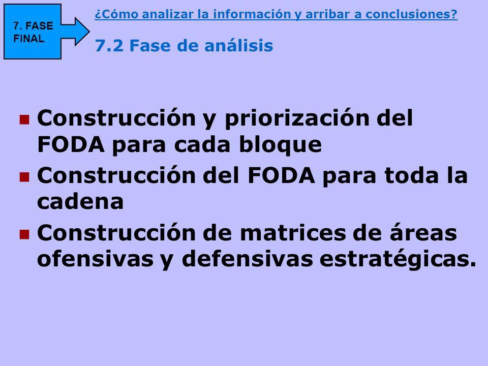 Construcción y priorización del FODA para cada bloque