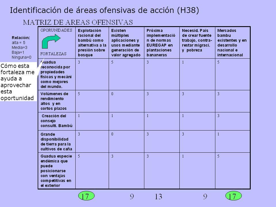 Identificación de áreas ofensivas de acción (H38)