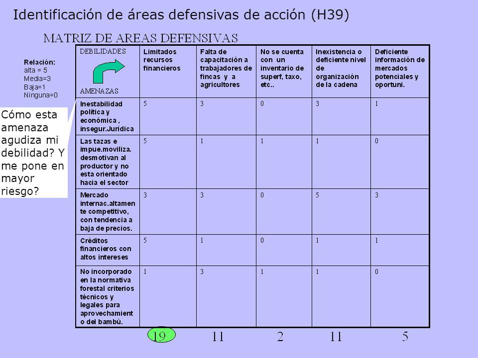 Identificación de áreas defensivas de acción (H39)