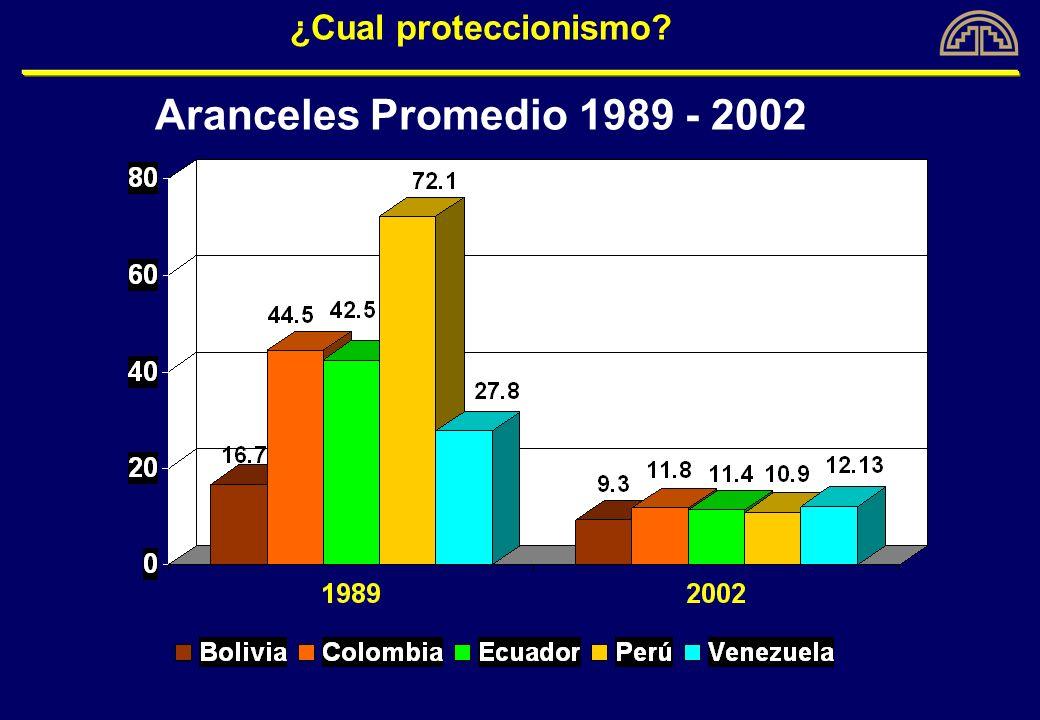 ¿Cual proteccionismo Aranceles Promedio 1989 - 2002