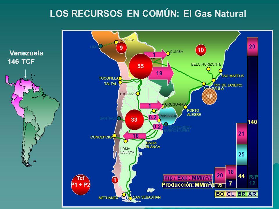 LOS RECURSOS EN COMÚN: El Gas Natural