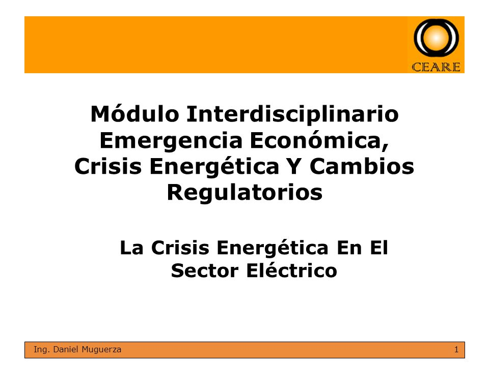 La Crisis Energética En El Sector Eléctrico