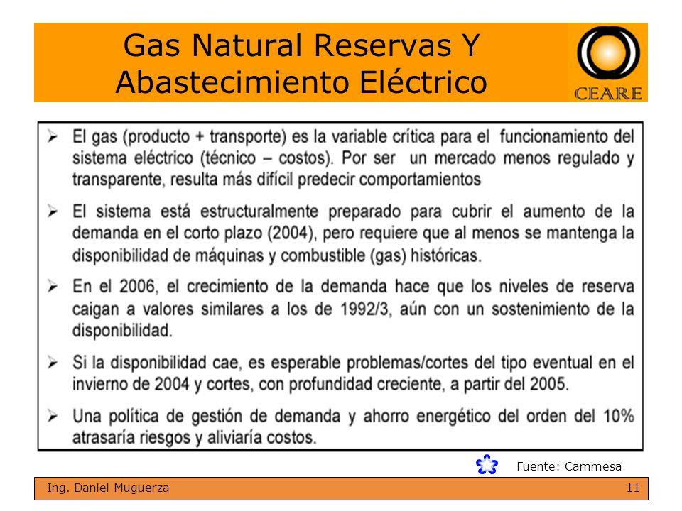 Gas Natural Reservas Y Abastecimiento Eléctrico