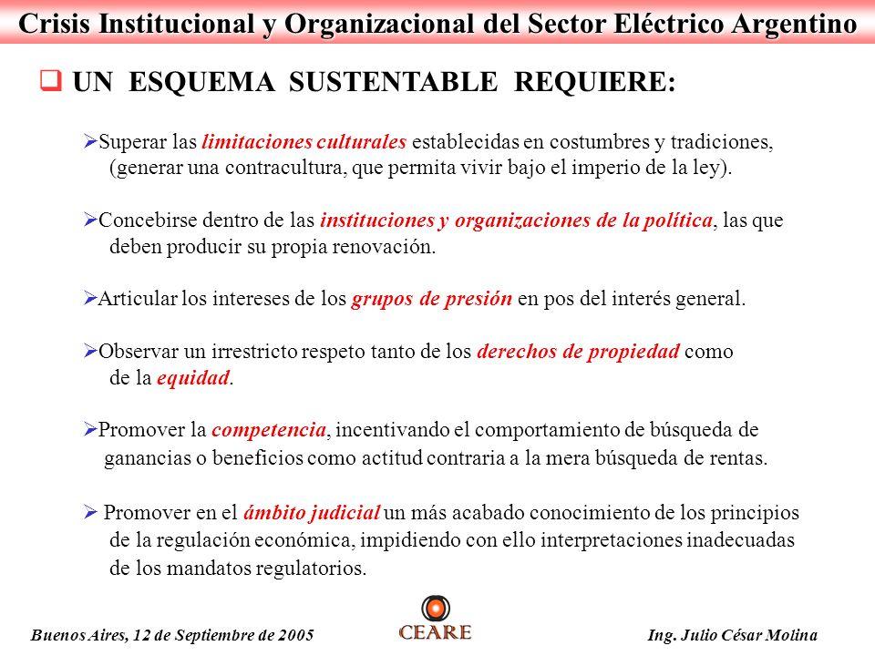 Crisis Institucional y Organizacional del Sector Eléctrico Argentino