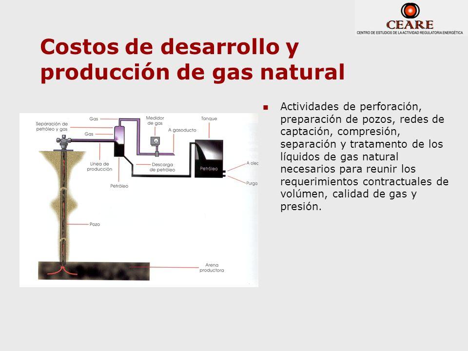 Costos de desarrollo y producción de gas natural