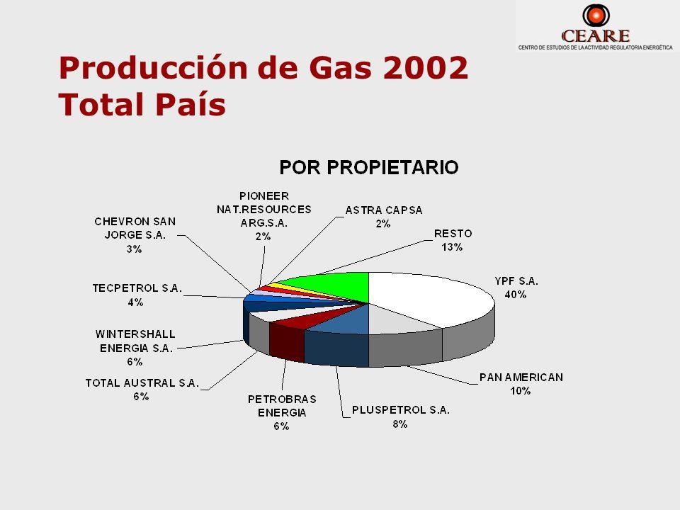 Producción de Gas 2002 Total País