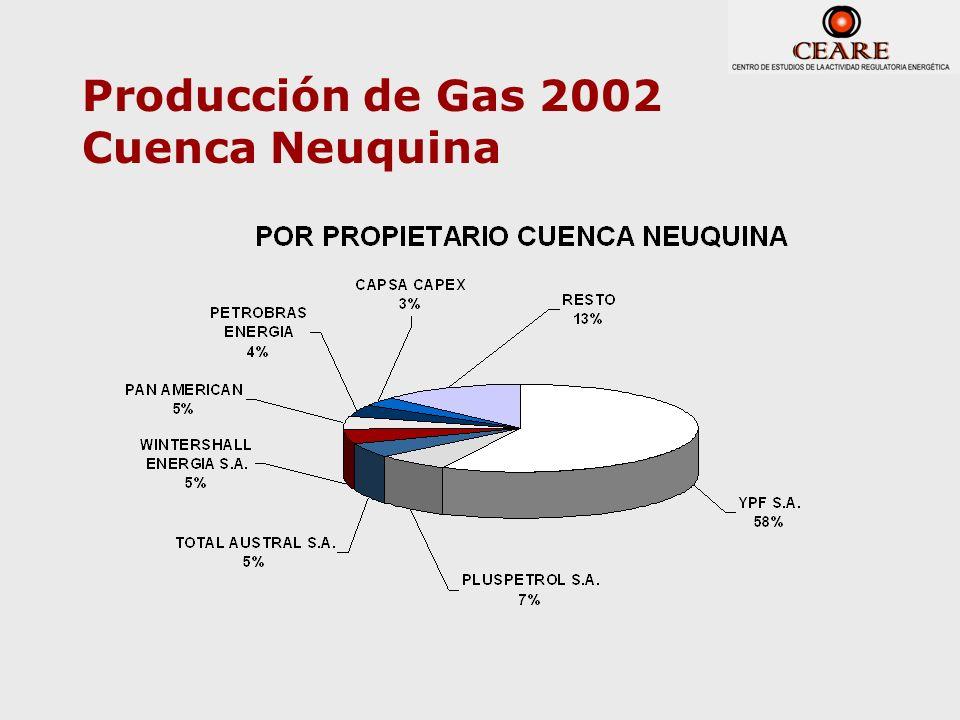 Producción de Gas 2002 Cuenca Neuquina