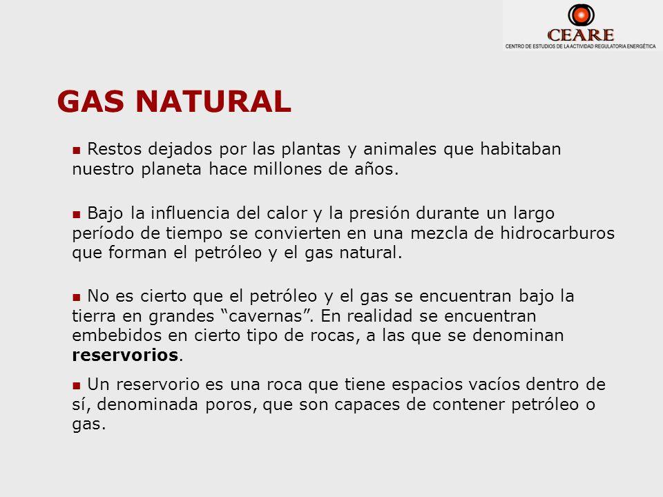 GAS NATURAL Restos dejados por las plantas y animales que habitaban nuestro planeta hace millones de años.