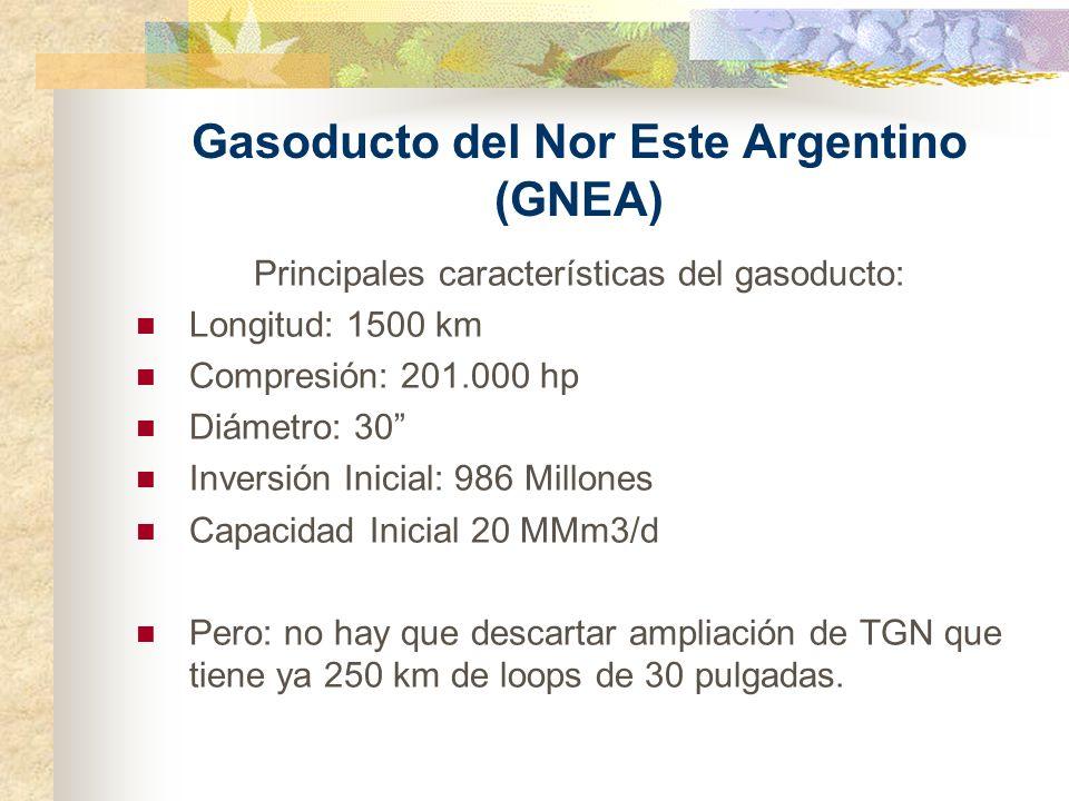 Gasoducto del Nor Este Argentino (GNEA)