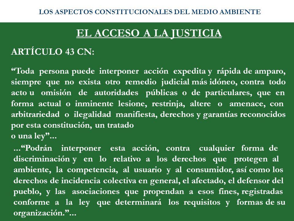 EL ACCESO A LA JUSTICIA ARTÍCULO 43 CN: