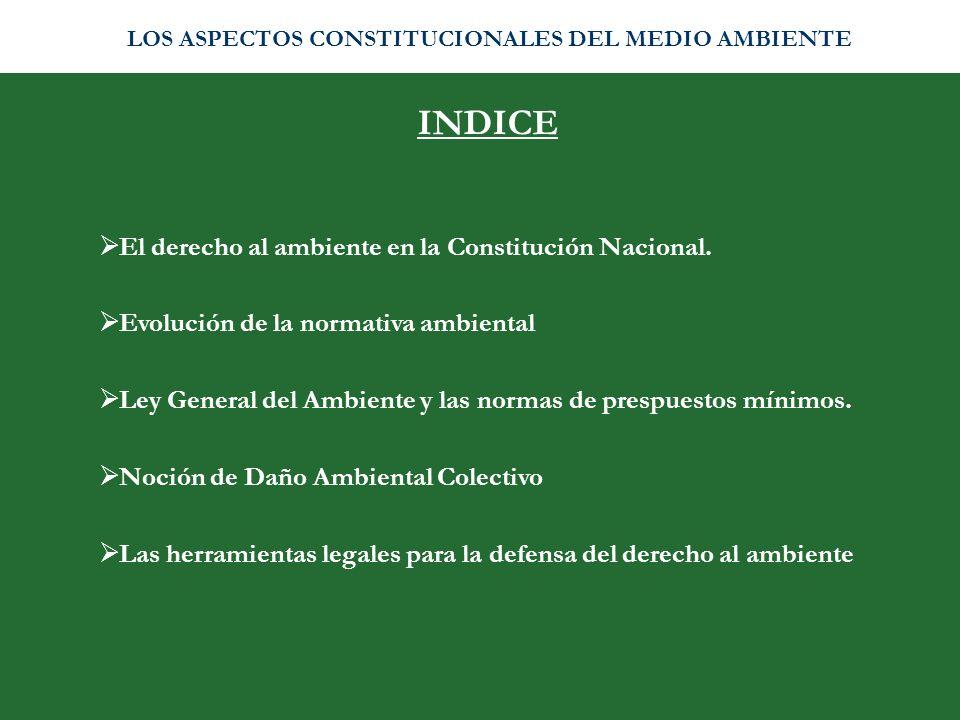 INDICE El derecho al ambiente en la Constitución Nacional.