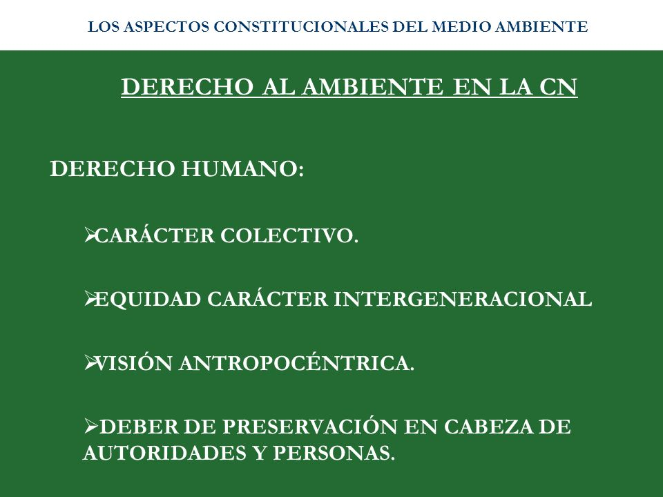 DERECHO AL AMBIENTE EN LA CN