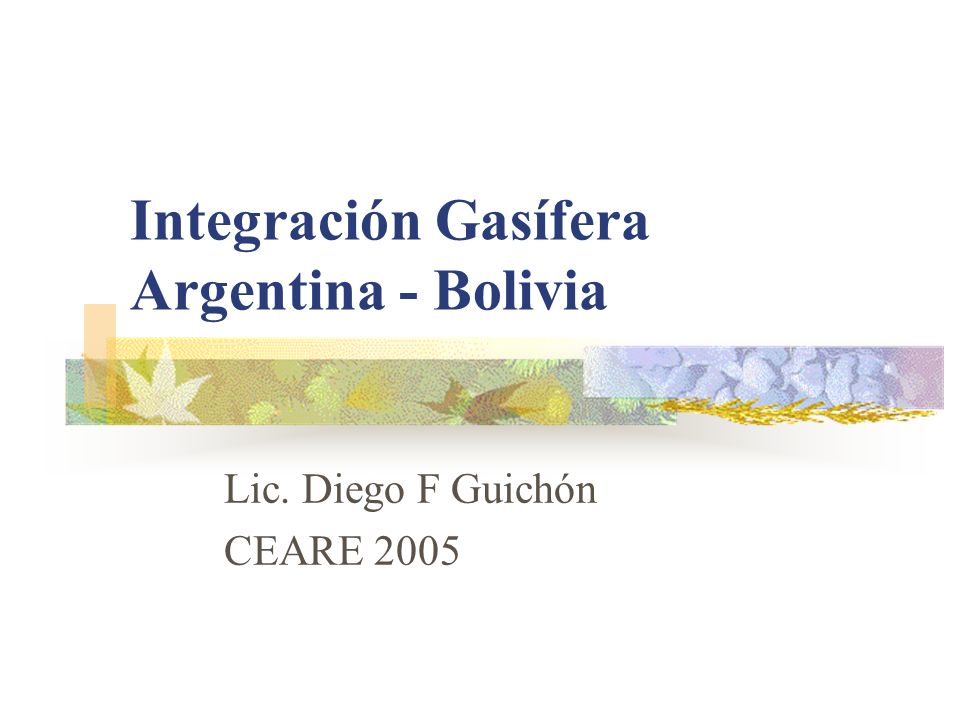 Integración Gasífera Argentina - Bolivia