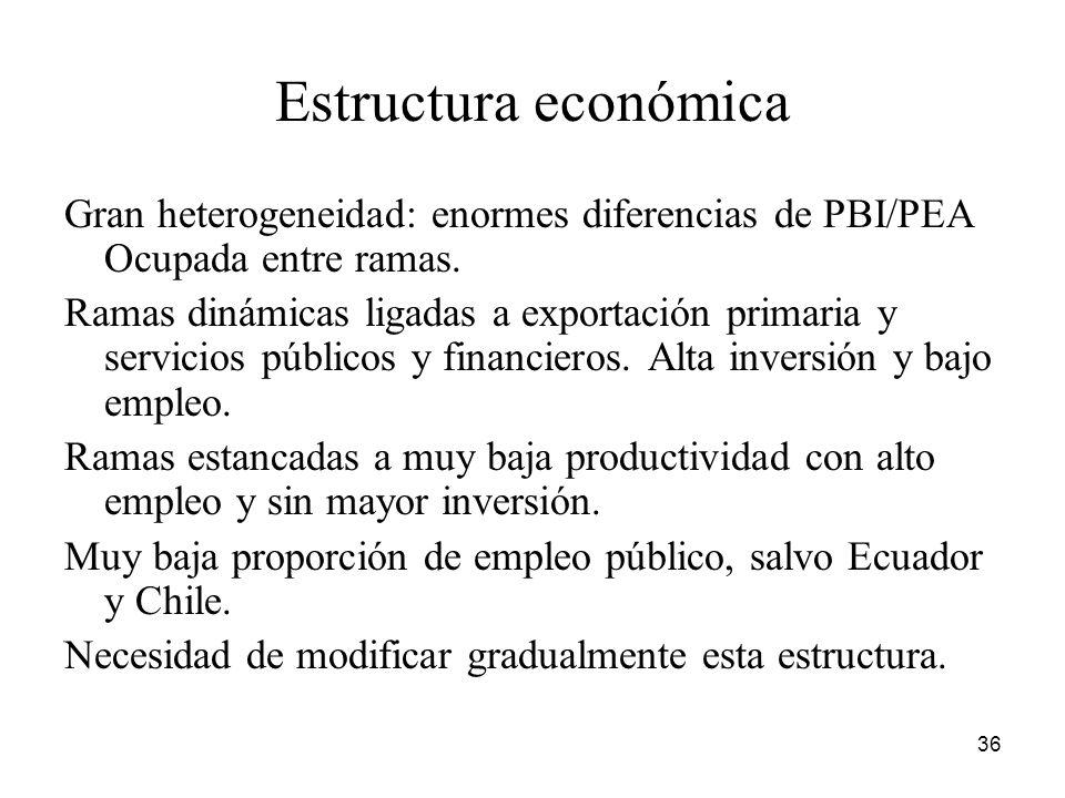 Estructura económica Gran heterogeneidad: enormes diferencias de PBI/PEA Ocupada entre ramas.