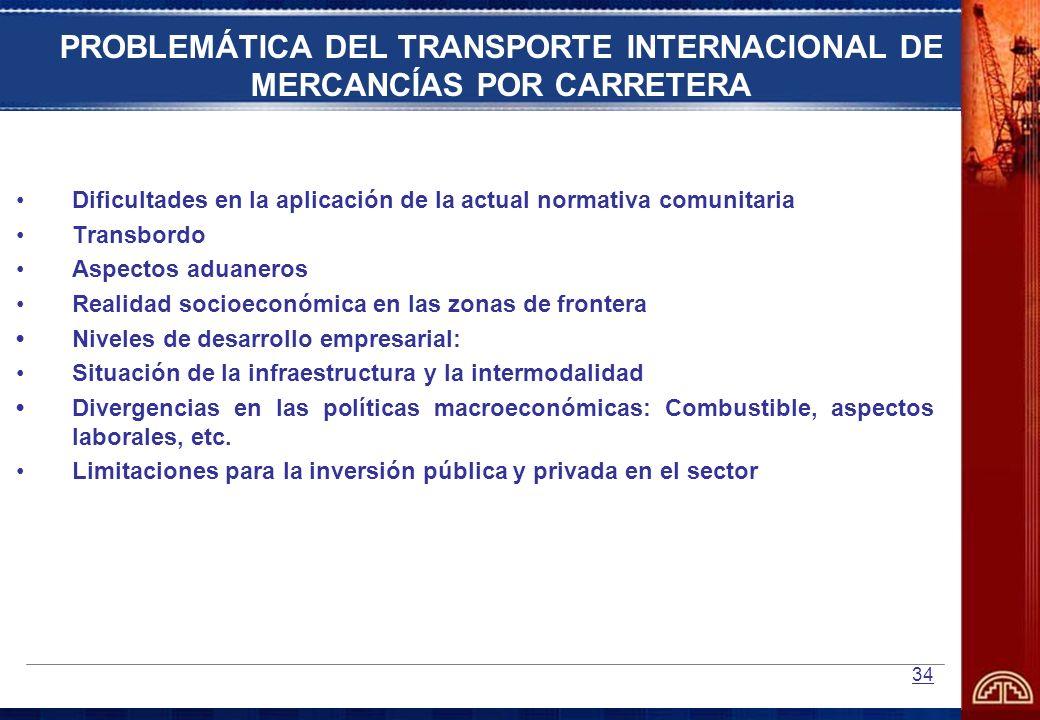 PROBLEMÁTICA DEL TRANSPORTE INTERNACIONAL DE MERCANCÍAS POR CARRETERA