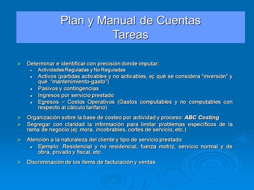 Plan y Manual de Cuentas Tareas