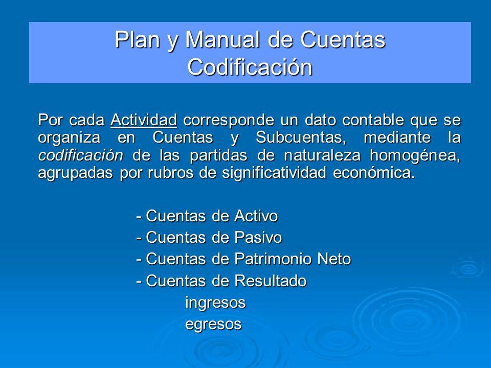 Plan y Manual de Cuentas Codificación