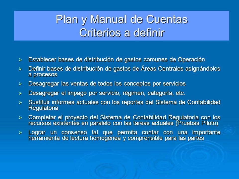 Plan y Manual de Cuentas Criterios a definir