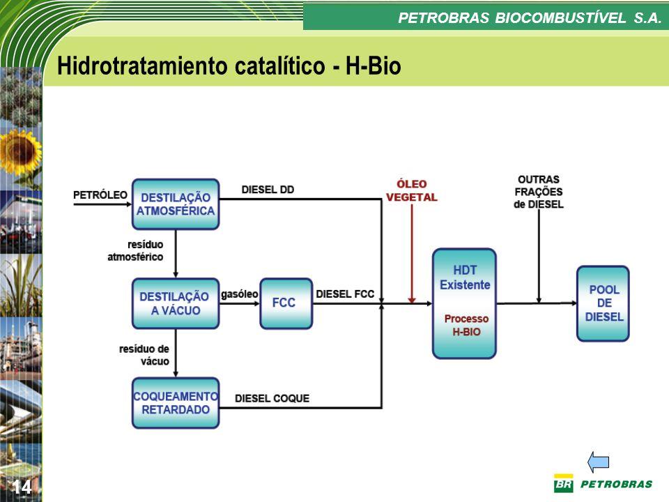 Hidrotratamiento catalítico - H-Bio