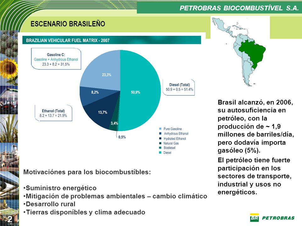 ESCENARIO BRASILEÑO PETROBRAS BIOCOMBUSTÍVEL S.A.