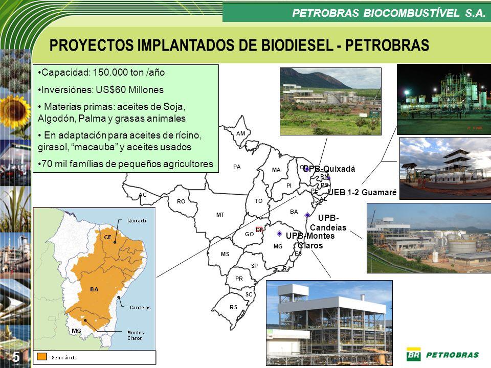 PROYECTOS IMPLANTADOS DE BIODIESEL - PETROBRAS