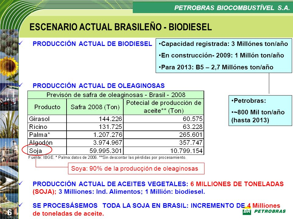 ESCENARIO ACTUAL BRASILEÑO - BIODIESEL