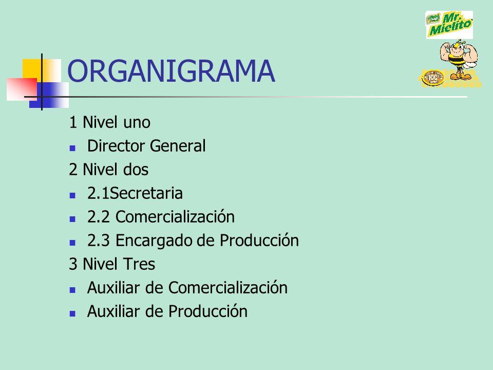 ORGANIGRAMA 1 Nivel uno Director General 2 Nivel dos 2.1Secretaria