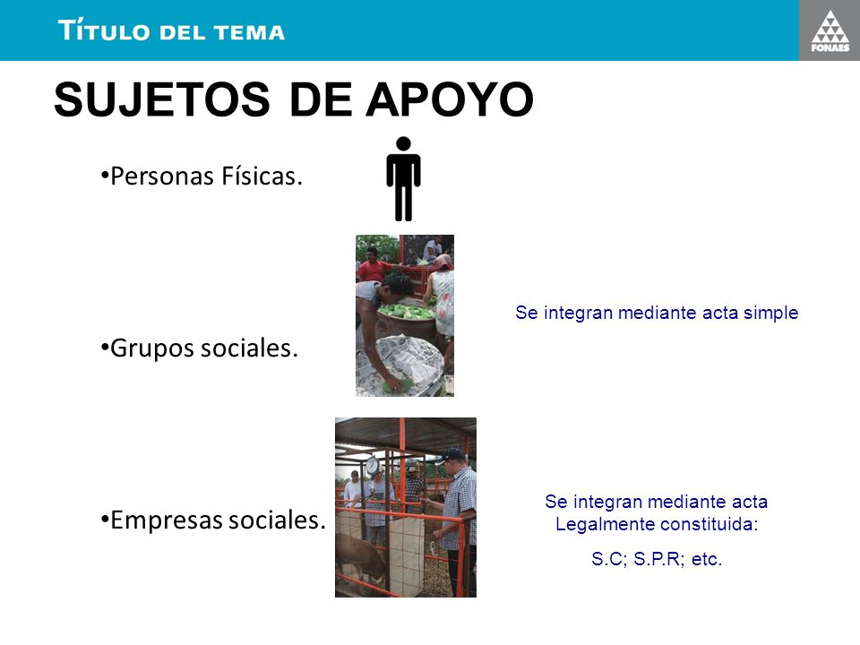 SUJETOS DE APOYO Personas Físicas. Grupos sociales. Empresas sociales.