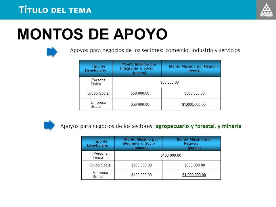 MONTOS DE APOYO Apoyos para negocios de los sectores: comercio, industria y servicios. Tipo de Beneficiario.