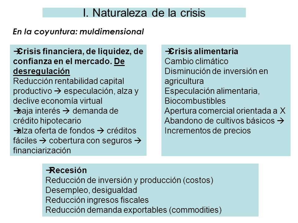I. Naturaleza de la crisis