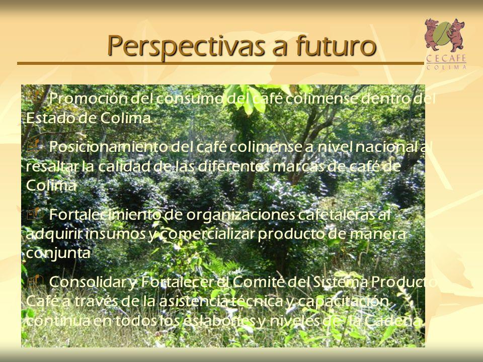 Perspectivas a futuro Promoción del consumo del café colimense dentro del Estado de Colima.