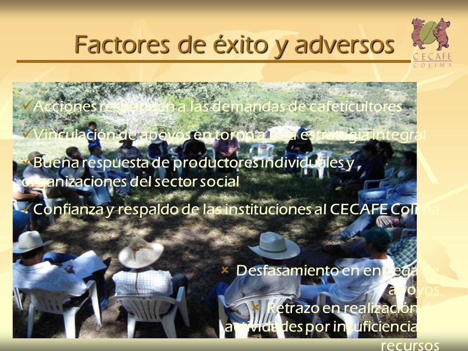 Factores de éxito y adversos