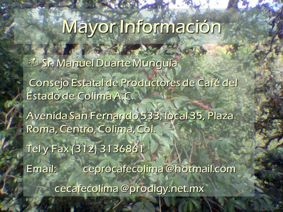 Mayor Información Sr. Manuel Duarte Munguía