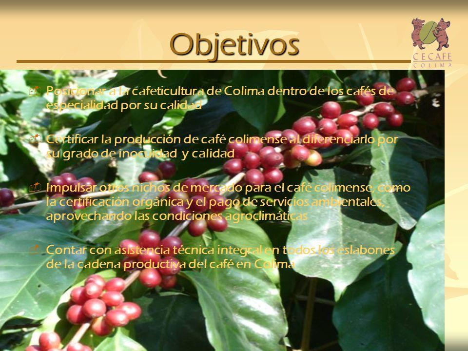 Objetivos Posicionar a la cafeticultura de Colima dentro de los cafés de especialidad por su calidad.