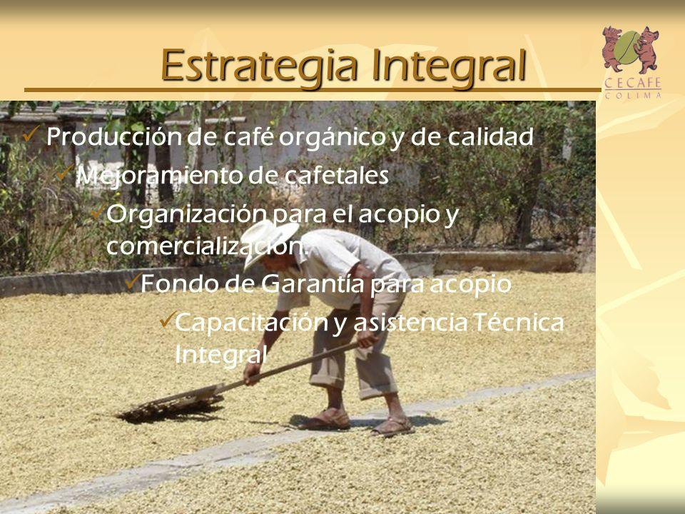 Estrategia Integral Producción de café orgánico y de calidad