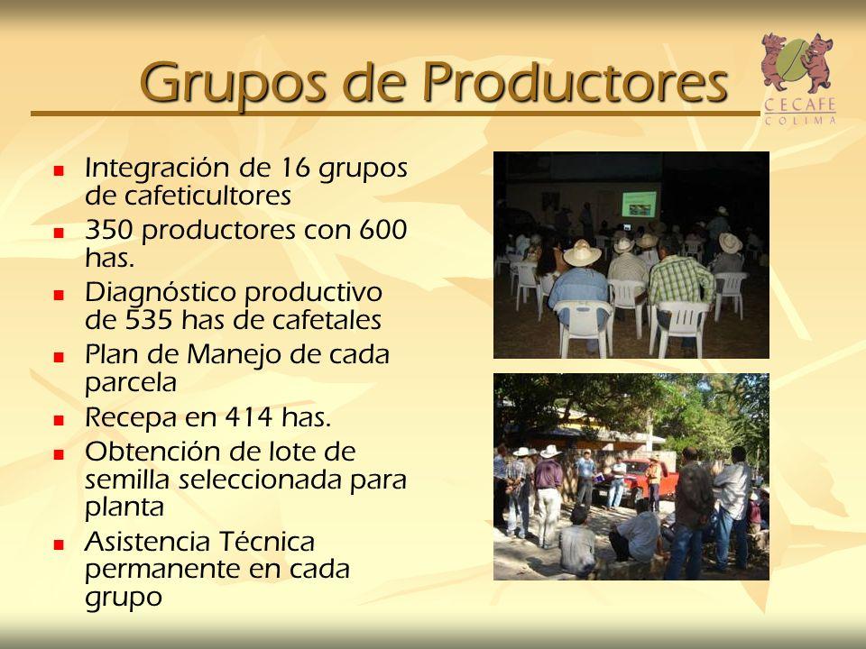 Grupos de Productores Integración de 16 grupos de cafeticultores
