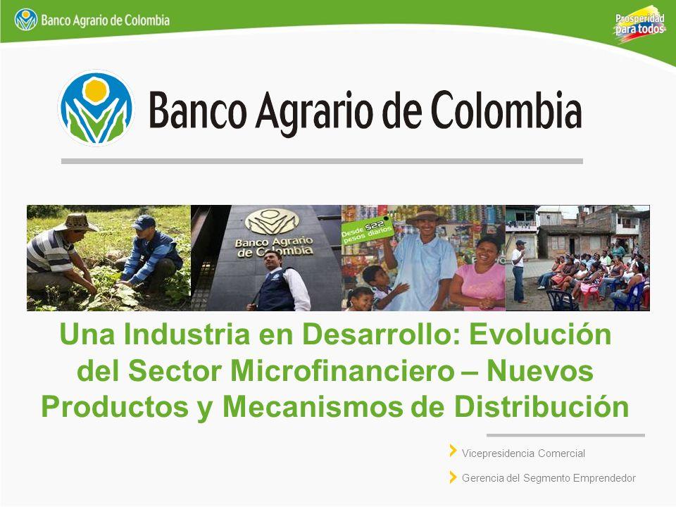 Una Industria en Desarrollo: Evolución del Sector Microfinanciero – Nuevos Productos y Mecanismos de Distribución