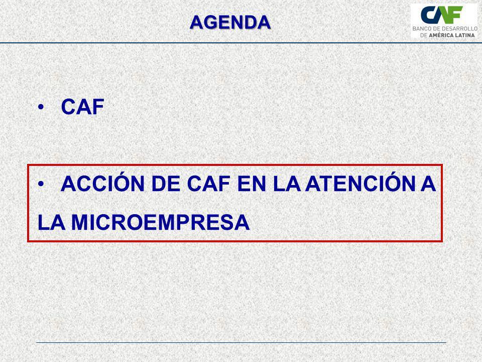 ACCIÓN DE CAF EN LA ATENCIÓN A LA MICROEMPRESA