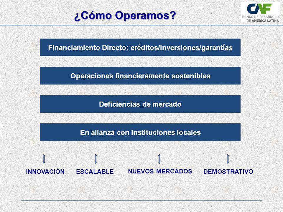 ¿Cómo Operamos Financiamiento Directo: créditos/inversiones/garantías