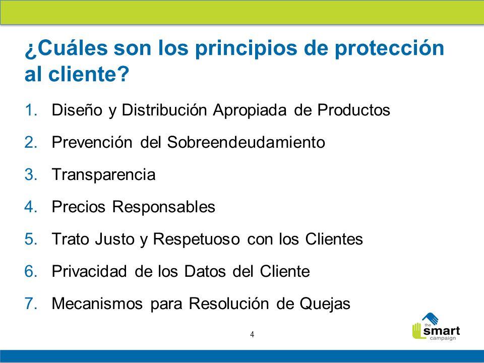 ¿Cuáles son los principios de protección al cliente