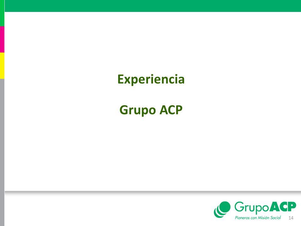 Experiencia Grupo ACP