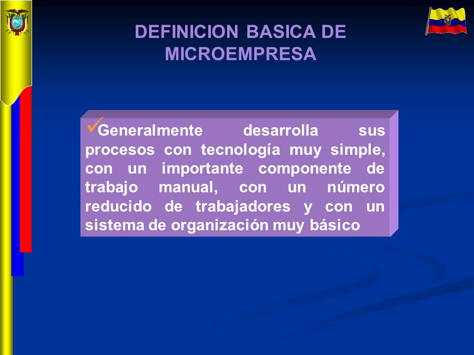 DEFINICION BASICA DE MICROEMPRESA