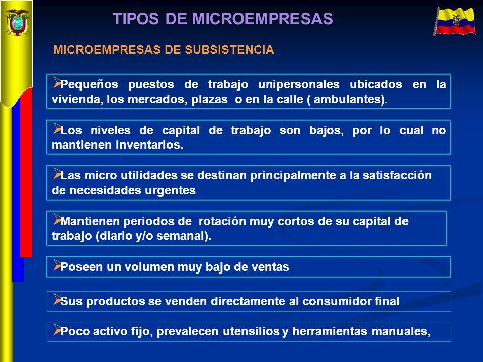 TIPOS DE MICROEMPRESAS