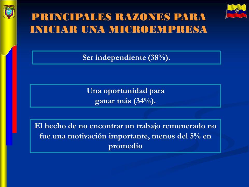 PRINCIPALES RAZONES PARA INICIAR UNA MICROEMPRESA