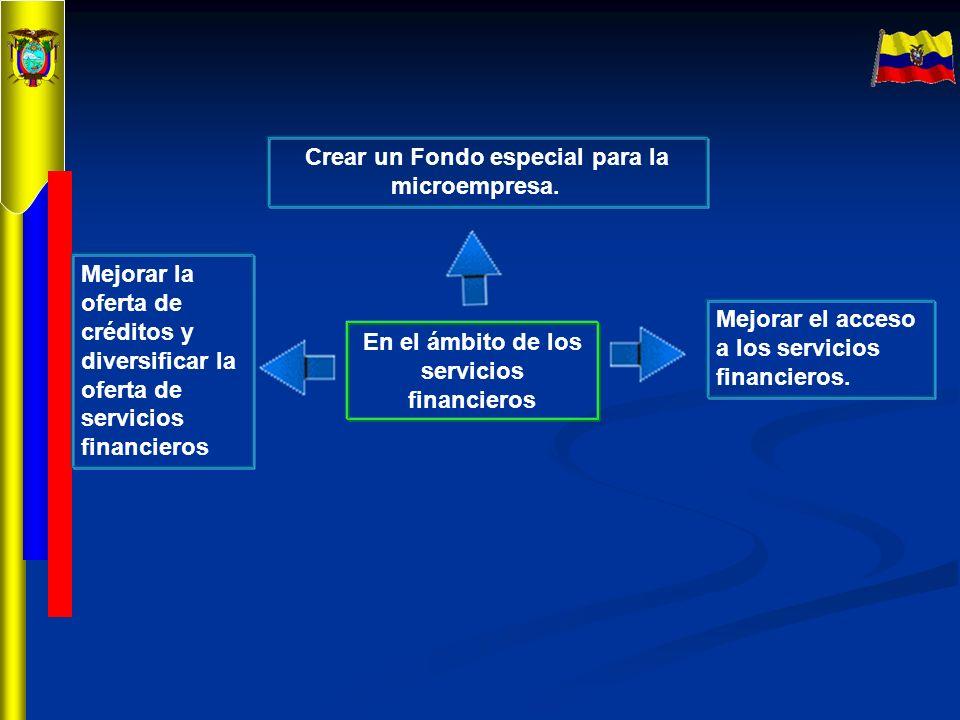 Crear un Fondo especial para la microempresa.