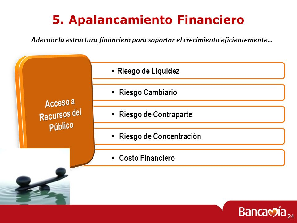 5. Apalancamiento Financiero Acceso a Recursos del Público