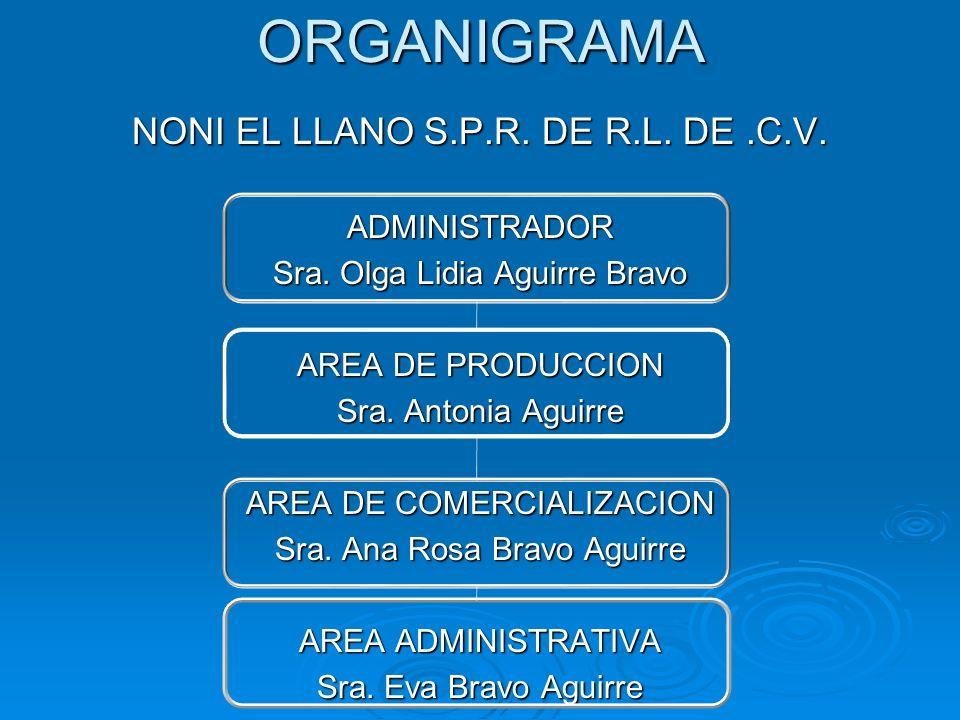 ORGANIGRAMA NONI EL LLANO S.P.R. DE R.L. DE .C.V. ADMINISTRADOR