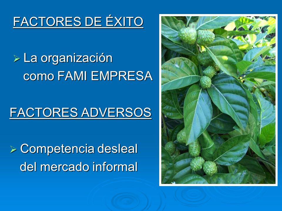 FACTORES DE ÉXITO La organización. como FAMI EMPRESA.