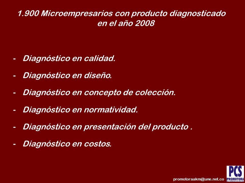 1.900 Microempresarios con producto diagnosticado en el año 2008
