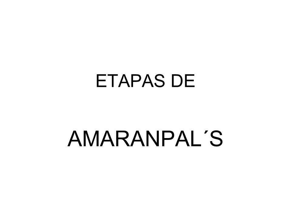 ETAPAS DE AMARANPAL´S